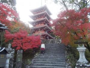 紅葉の素晴らしい竹林寺