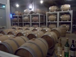 地下室のワイン貯蔵所